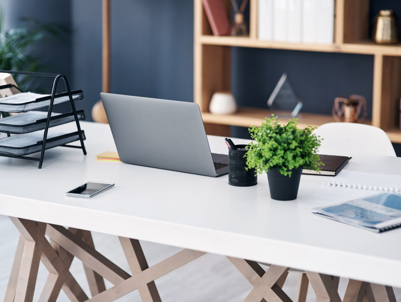 Business desk with laptop and plant on top